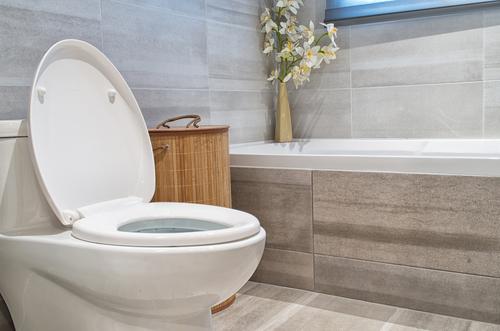 inodoro de bajo flujo en un baño
