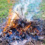 ¿Puedes hacer fuego en tu jardín?