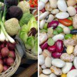 Vegetales versus legumbres, explicado