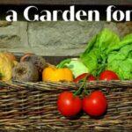 Jardinería con un presupuesto limitado: cómo iniciar un huerto por € 25