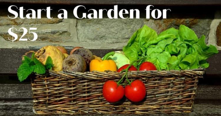 Jardinería con un presupuesto limitado: cómo iniciar un huerto por $ 25