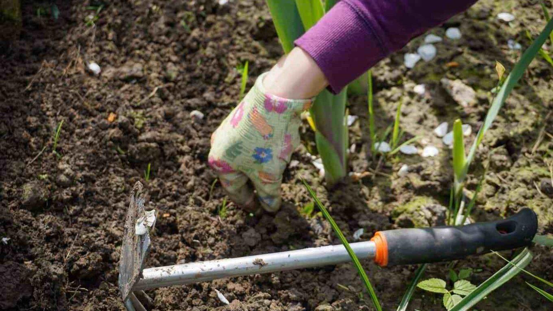 Cómo prevenir y reducir el dolor de rodilla y espalda mientras se trabaja en el jardín