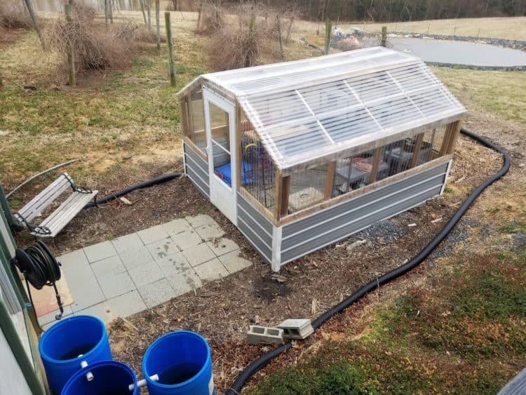 Cultivo en invernadero para principiantes: cómo comencé