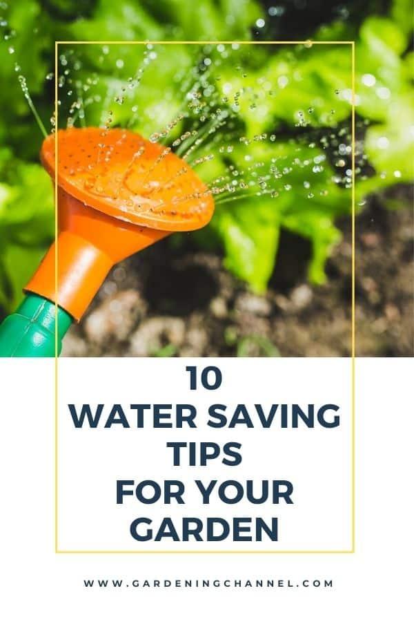 regadera de jardín con texto superpuesto diez consejos para ahorrar agua en su jardín
