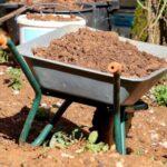 ¿Se puede usar tierra para macetas para vegetales?