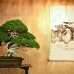 5 consejos para una decoración japonesa exitosa