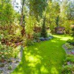 Orina: fertilizante para el jardín