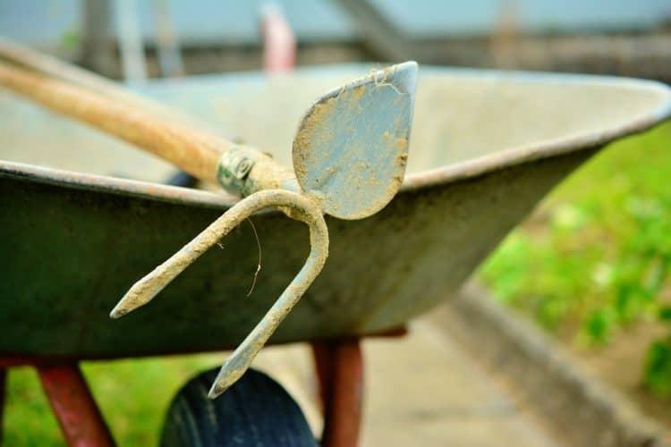 ¿Qué herramienta necesita todo jardinero?