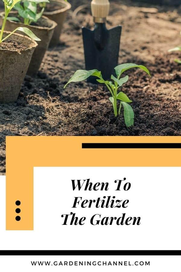 plantar un jardín con texto superpuesto cuándo fertilizar el jardín