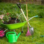3 consejos para la jardinería en suelo de piedra caliza