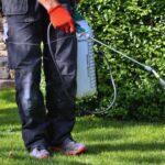 4 productos que nunca debes usar para desyerbar el jardín