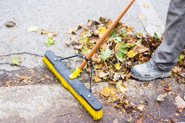 Limpieza de hojas de otoño