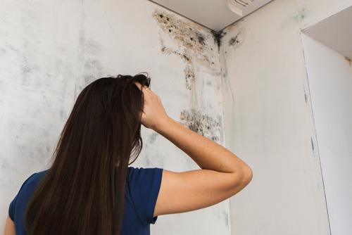 Chica mirando moho negro en el azulejo del baño