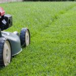 Mantenimiento del jardín: 12 errores que no debe cometer